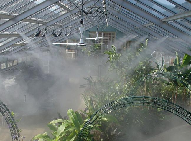 Những lưu ý trong việc tưới nước cho cây lan