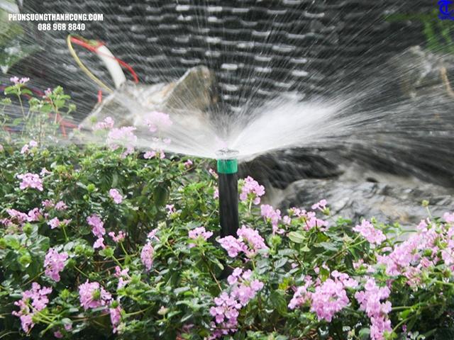 hệ thống tưới phun mưa bằng mũi phun