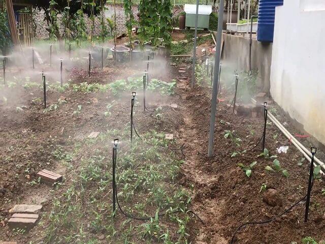 hệ thống tưới phun mưa